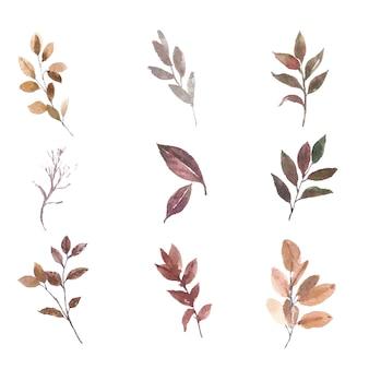 Aquarela de várias folhas definir elemento em branco para uso decorativo.