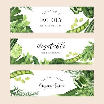 Aquarela de vegetais verdes fazenda orgânica fresca para menu de comida