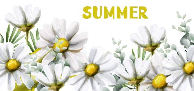 Aquarela de verão de camomila