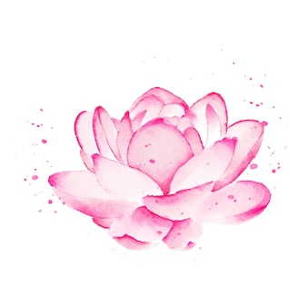 Aquarela flor de lótus