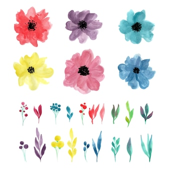 Aquarela floral definida para ilustração vetorial isolado de design de decoração. floresta de verão. coleção de folhas. arte botânica. galho, folhas, flores.