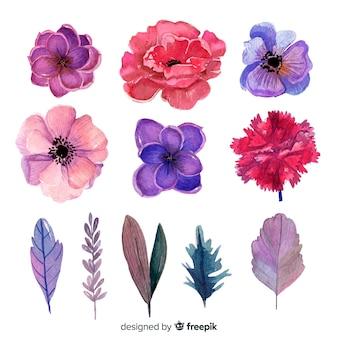 Aquarela flores e folhas com cores intensas