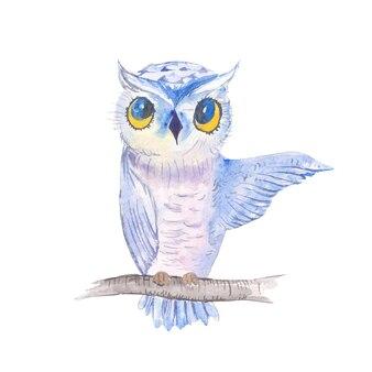 Aquarela fofa coruja mão ilustrações desenhadas com isolado no fundo branco