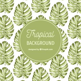Aquarela fundo tropical com estilo vintage