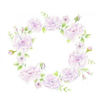 Aquarela grinalda de rosas selvagens suavemente rosa. ilustração vetorial