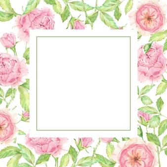 Aquarela linda moldura de flor rosa inglesa