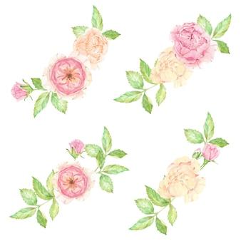 Aquarela lindo buquê de flores de rosas inglesas isolado