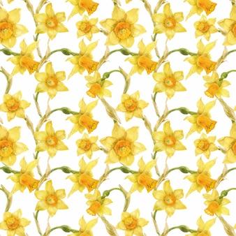 Aquarela padrão floral realista com narciso