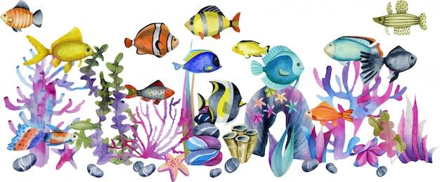 Aquarela peixes tropicais exóticos oceânicos entre a ilustração de corais e pedras do mar
