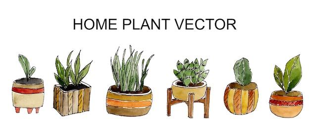 Aquarela plantas verdes em vasos isolados no branco