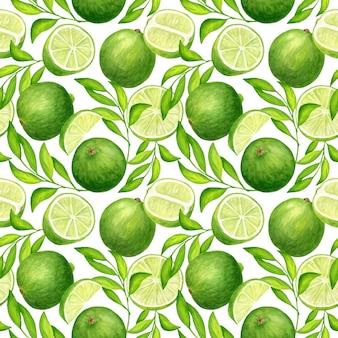 Aquarela sem costura padrão com folhas e frutos de limão verde
