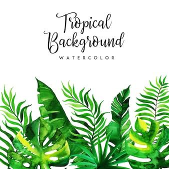 Aquarela Tropical Floral e fundo de folhas