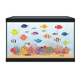 Aquário retangular com peixes coloridos