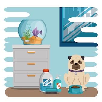 Aquário tigela com peixe e cachorro