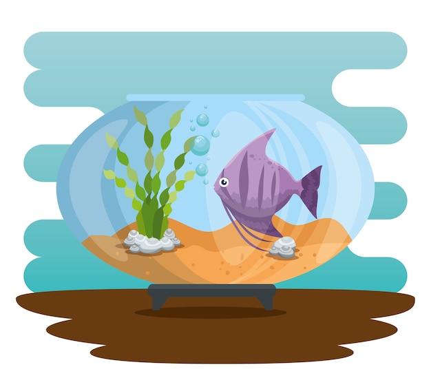 Aquário tigela com peixe