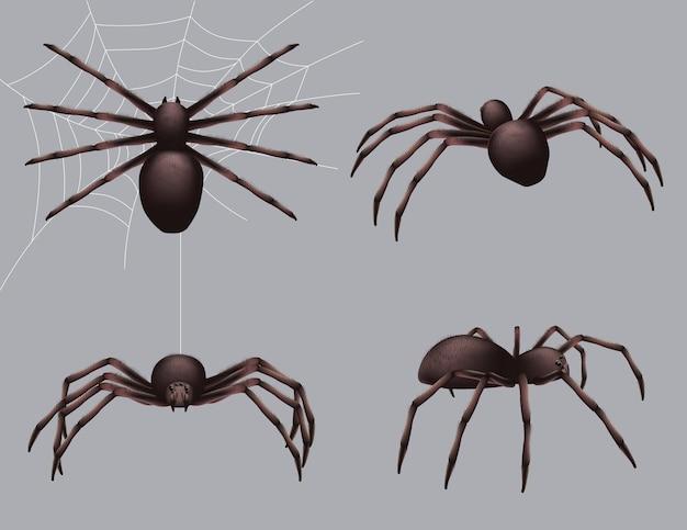 Aranha realista. insetos da natureza rastejam coleção perigo veneno preto medo aranha. Vetor Premium