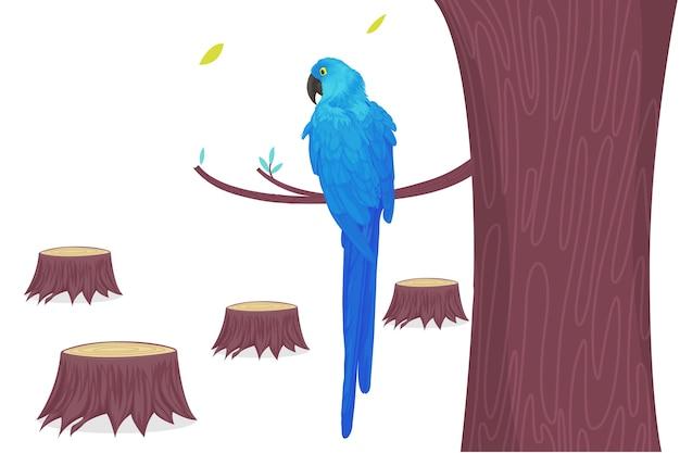 Arara-azul com papagaio apenas desenho à mão na cabeça