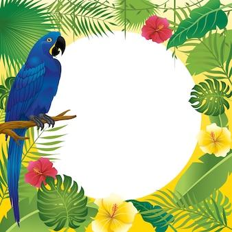 Arara azul e design de plantas tropicais