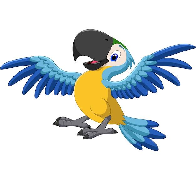Arara feliz voando