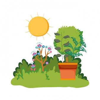Arbusto de jardim com cena natural de planta de casa