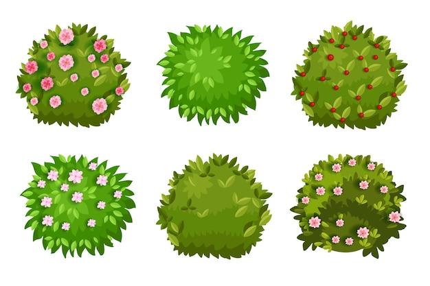 Arbusto desenho animado jardim verde coleção cerca viva com folhas verdes