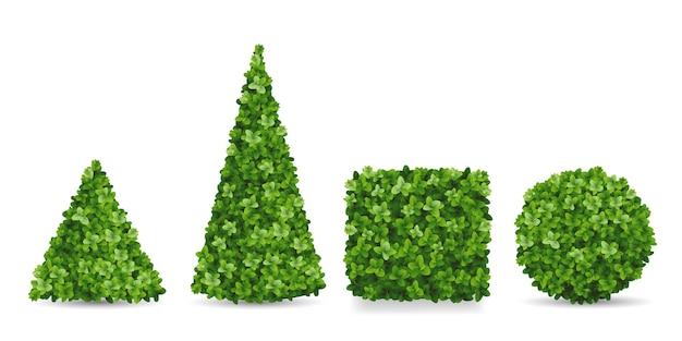 Arbustos de buxo de diferentes formas. topiários em forma de pirâmide, esfera, cubo. elementos decorativos do paisagismo do jardim.