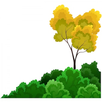 Arbustos e árvores