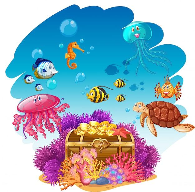 Arca do tesouro e animais marinhos debaixo d'água