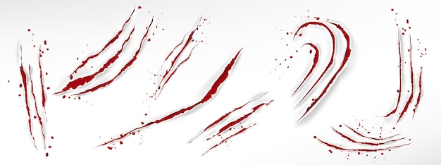 Arranhões de garras de gato com gotas de sangue, cortes vermelhos rasgados de animais selvagens