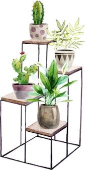 Arranjo com plantas de casa pintadas à mão em aquarela