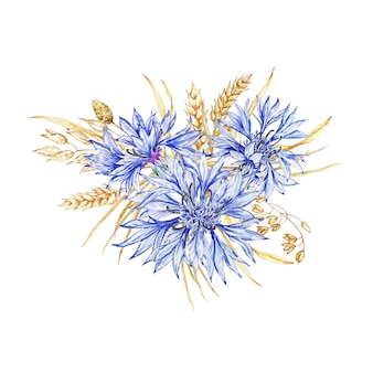 Arranjo de centáureas de flores silvestres e flores secas