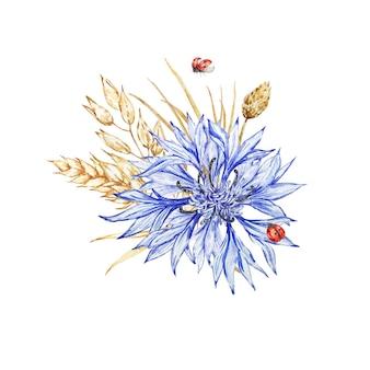 Arranjo de centáureas de flores silvestres, flores secas e joaninhas