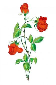Arranjo de flores com flores rosas vermelhas.