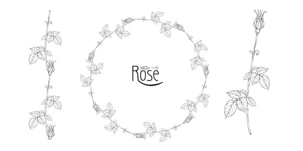 Arranjo floral de vetor com flores rosas e botões de rosa