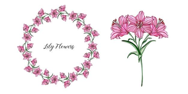 Arranjos de flor do vetor com flores do lírio.