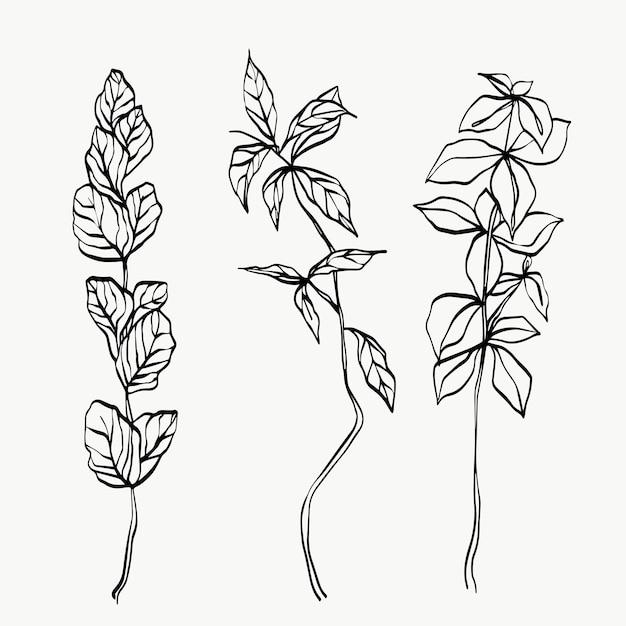 Arte de linha de folhas botânicas. linha de plantas modernas ou mínimas abstratas. perfeito para decoração de casa, como pôsteres. desenho de ilustrações vetoriais.