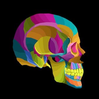 Arte do crânio colorido
