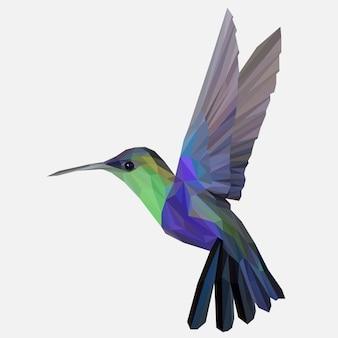 Arte lowpoly do colibri