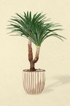 Arte vetorial de árvore, agave em um vaso de flores