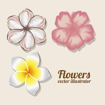 Artes das flores