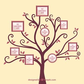 Árvore com quadros na parede