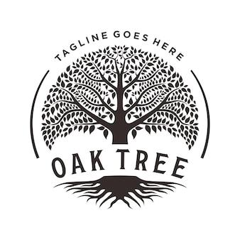 Árvore da vida folha de carvalho banyan e raiz selo emblema logotipo design inspiração