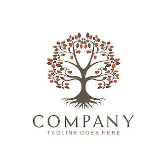 Árvore da vida folha de carvalho banyan e selo de raiz selo logotipo logotipo
