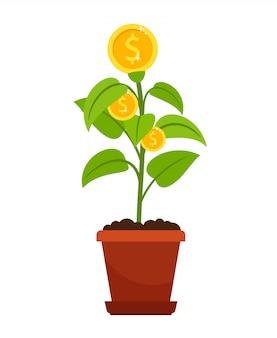 Árvore de dinheiro no ícone de vaso de flores em branco