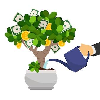 Árvore de dinheiro no vaso de flores