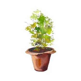 Árvore de flores em vaso aquarela pintura desenhada à mão