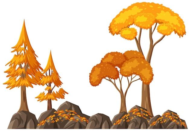 Árvore de outono isolada em fundo branco