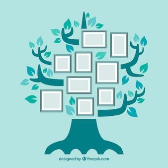Árvore e quadros diferentes