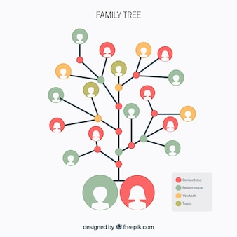 Árvore genealógica com círculos em cores diferentes