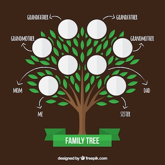Árvore genealógica com folhas verdes e setas